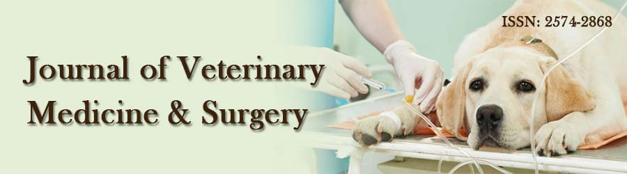 Journal of Veterinary Medicine and Surgery
