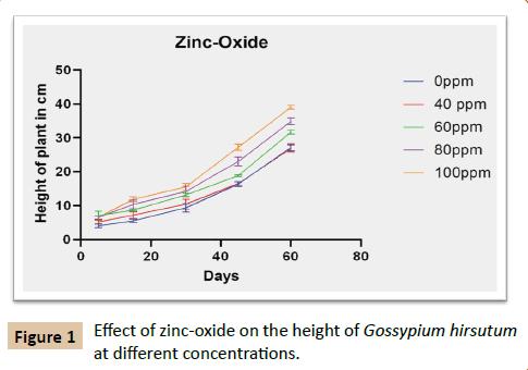 plant-sciences-agricultural-zinc-oxide