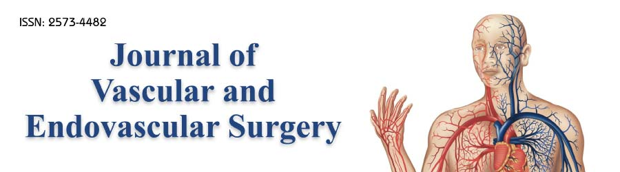 Journal of Vascular and Endovascular Surgery