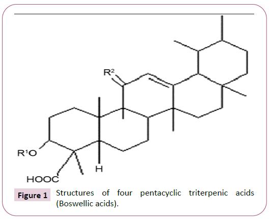 phytomedicine-clinical-therapeutics-pentacyclic-triterpenic