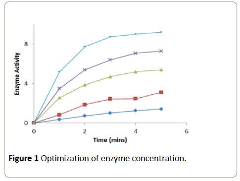 Insights-Enzyme-Research-concentration