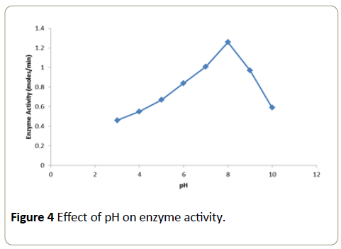 Insights-Enzyme-Research-enzyme