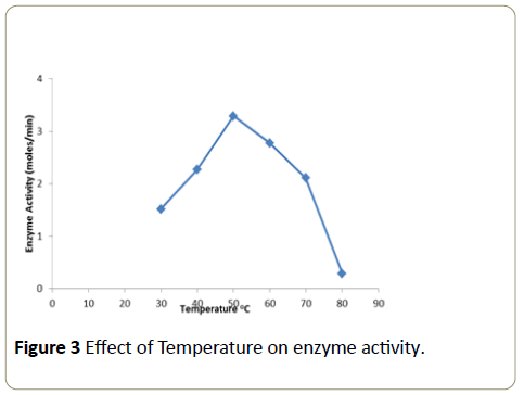 Insights-Enzyme-Research-temperature