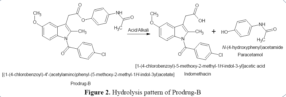 advanced-drug-delivery-hydrolysis-pattern-prodrug-B