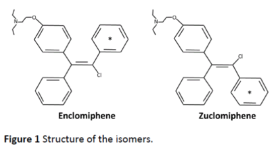 advanced-techniques-clinical-microbiology-Structure-isomers