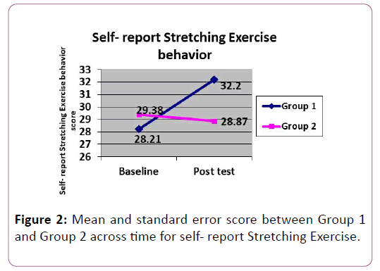 anatomical-science-research-Stretching-Exercise