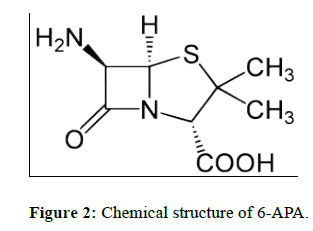 der-chemica-sinica-Chemical-structure-6-APA