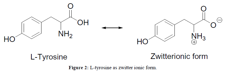 der-chemica-sinica-L-tyrosine-zwitter-ionic