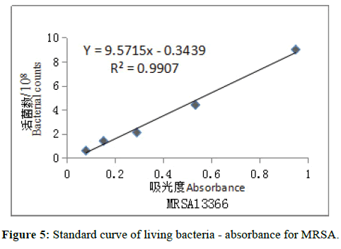 der-chemica-sinica-curve-living-bacteria