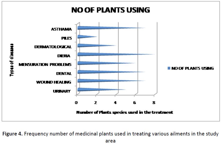 ethnomedicine-frequency-medicinal-plants