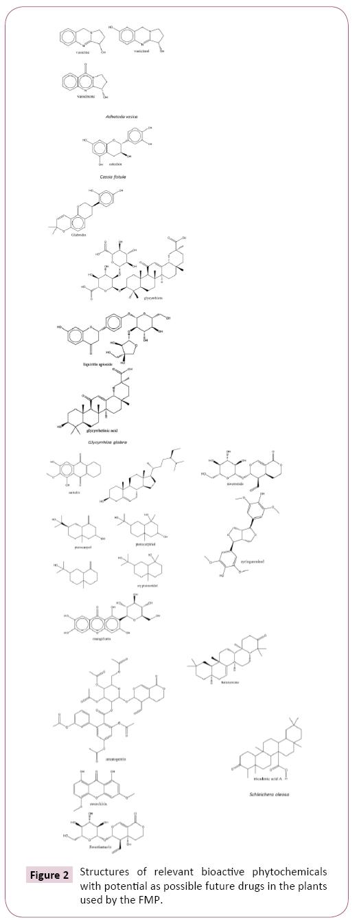 ethnomedicine-phytochemicals
