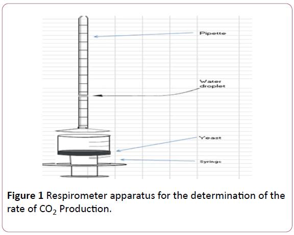 experimental-biology-Respirometer-apparatus