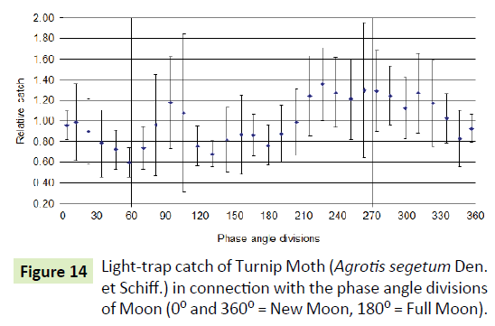 global-journal-of-research-and-review-catch-turnip-moth