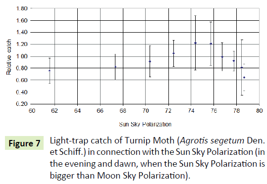 global-journal-of-research-and-review-turnip-moth
