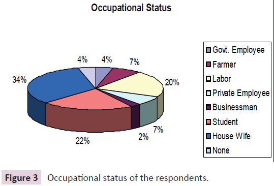 journal-biomedical-science-applications-Occupational-status