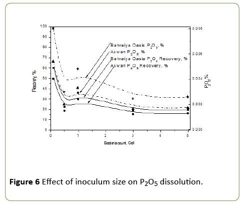journal-molecular-microbiology-dissolution