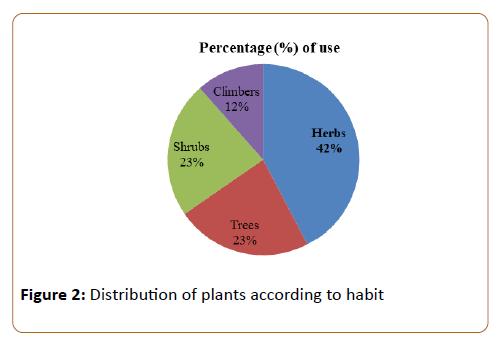 pharmacy-practice-education-Distribution-plants
