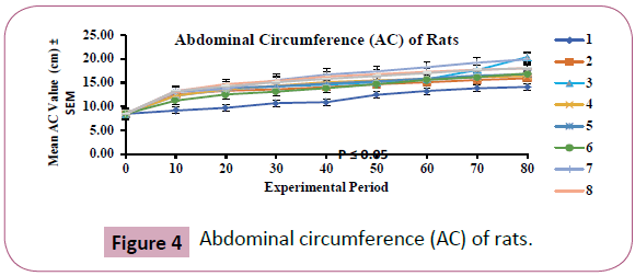 phytomedicine-and-clinical-therapeutics-Abdominal-circumference