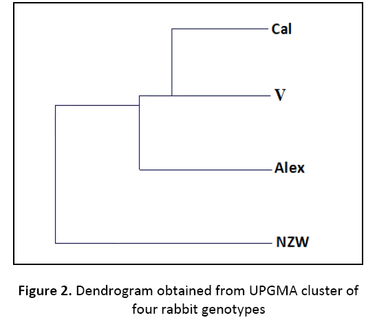 research-review-maternal-dendrogram